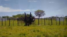Campo 300 hectáreas con estancia